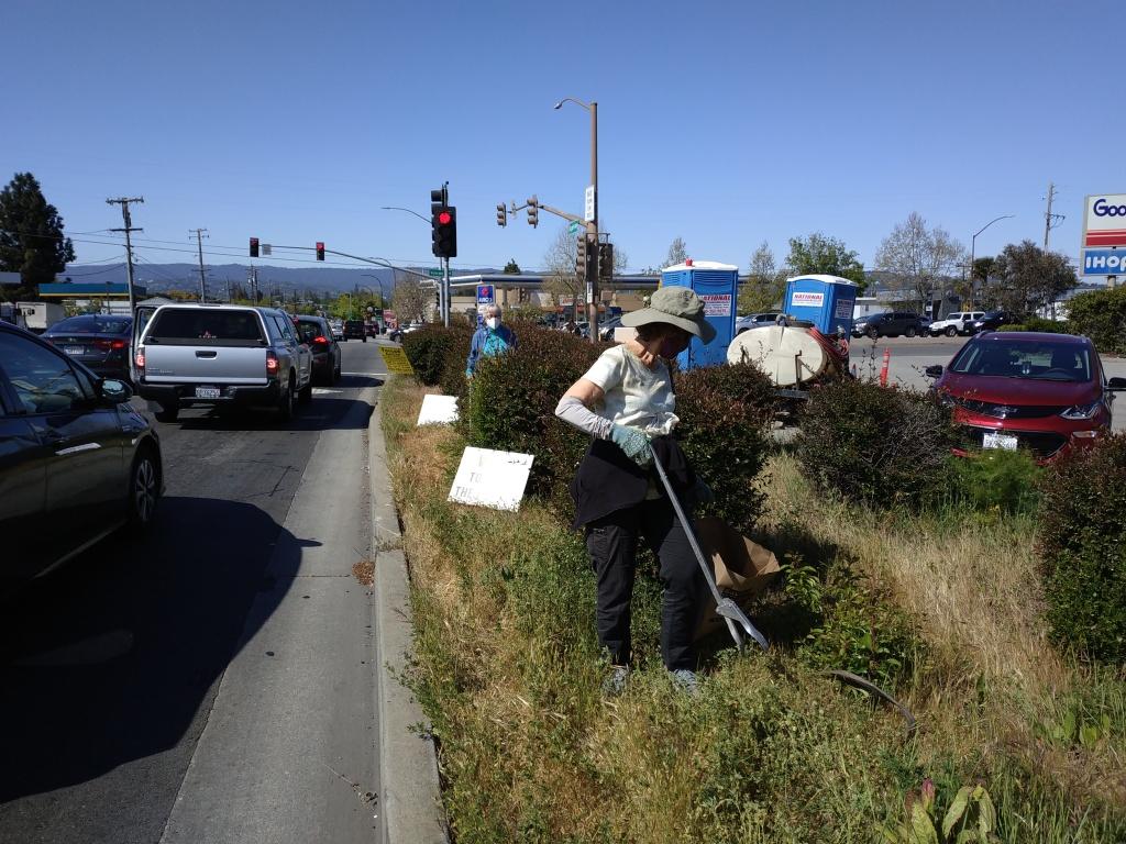 People picking up trash on roadside